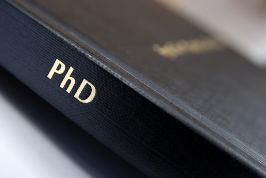 What doctoral examiners look for